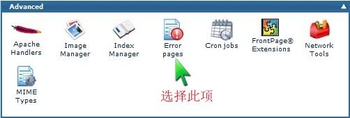 LunarPages主机cPanel设置错误页教程